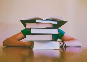 La oferta formativa en el sector es tan variada que exige a estudiantes y profesionales estudiar todas las opciones con detalle.