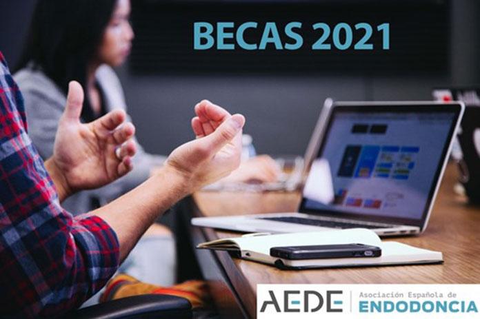 AEDE convoca las becas de pregrado y posgrado 2021