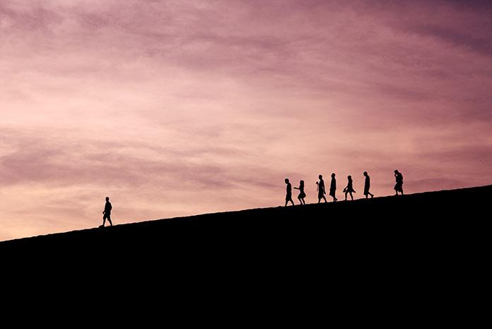 La importancia del liderazgo profesional