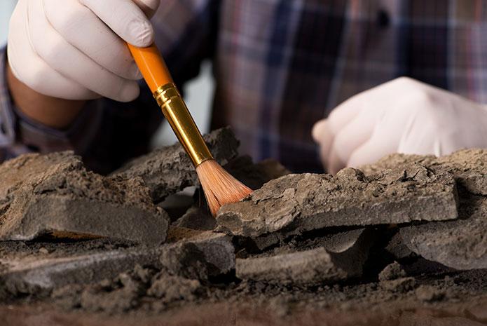 Las momias canarias presentaban diversos problemas dentales